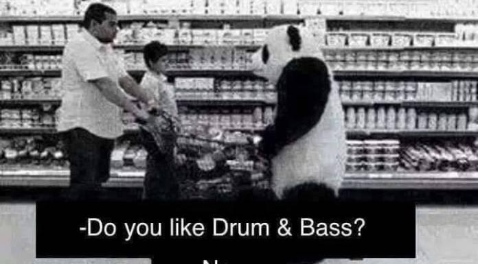 Dnb Panda